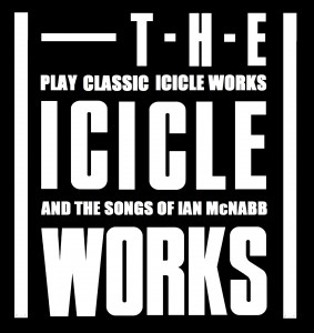 The Icicle Works Bedford Esquires
